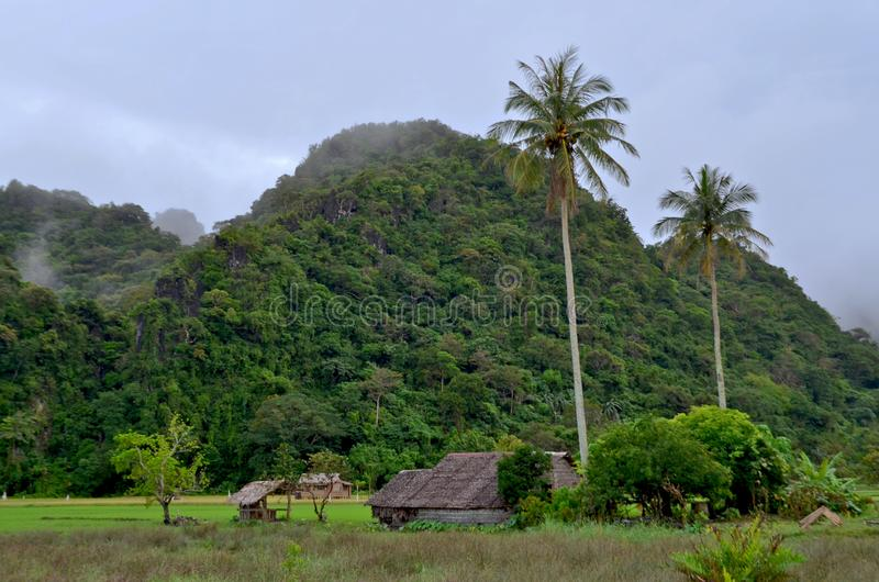 Paesaggio tropicale con le palme, la foresta, le case e le nuvole come immagine di sfondo immagine stock
