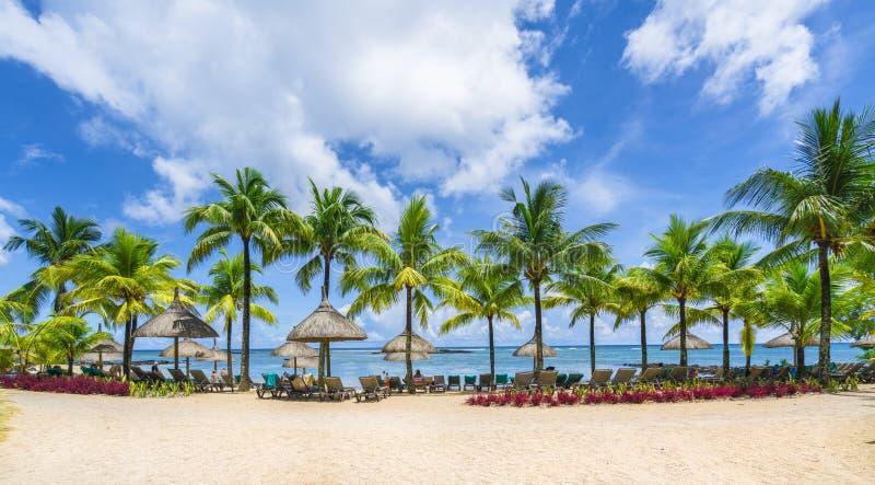 Paesaggio tropicale con le spiagge stupefacenti dell'isola delle Mauritius fotografia stock