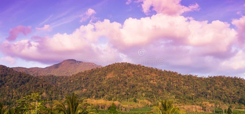 Paesaggio tropicale della natura di estate Foresta tropicale di paesaggio con catena montuosa ad alba, alle belle nuvole ed al ci immagine stock