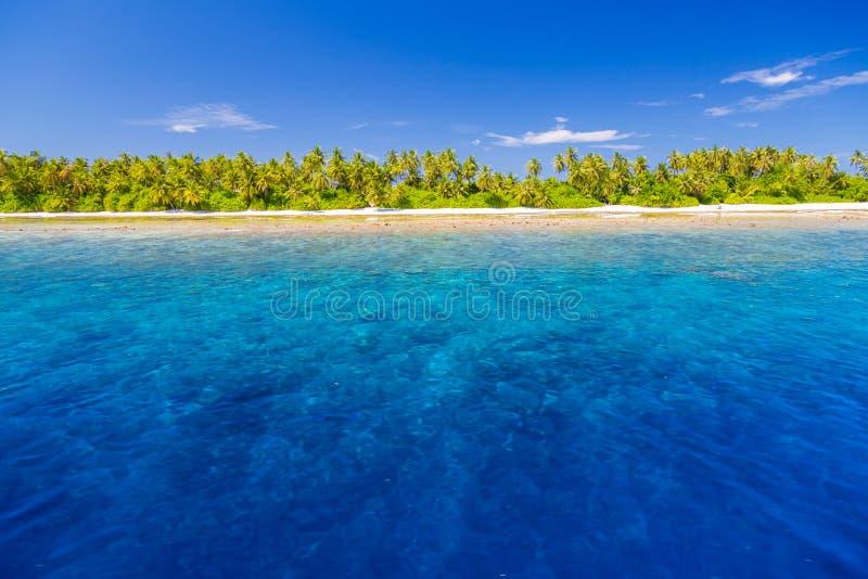Paesaggio tropicale della spiaggia Bei mare e palme e cielo blu blu Insegna tropicale della natura immagine stock libera da diritti