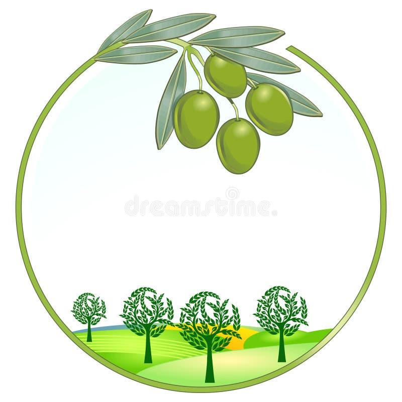 Paesaggio unico delle olive royalty illustrazione gratis