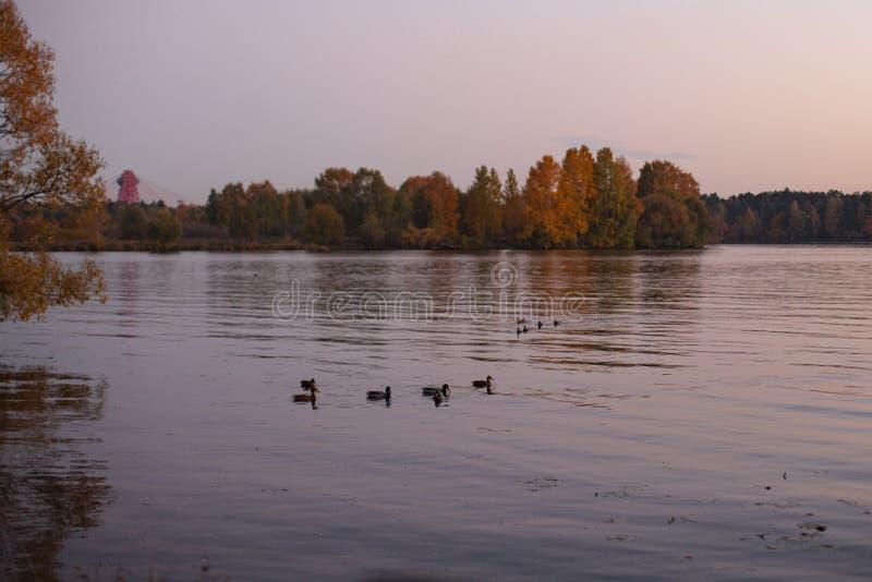 Paesaggio urbano al crepuscolo, tramonto sopra il fiume immagine stock libera da diritti