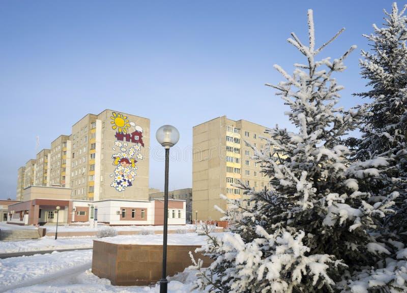 Paesaggio urbano di inverno con gli pelliccia-alberi e le case immagini stock libere da diritti