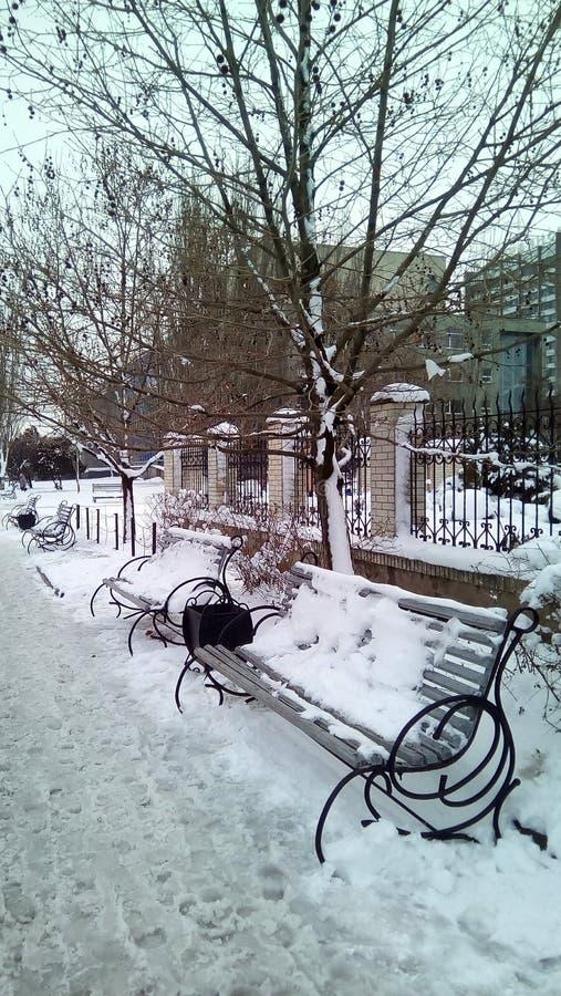 Paesaggio urbano di inverno con i banchi innevati, gli alberi, gli elementi architettonici e le costruzioni immagine stock