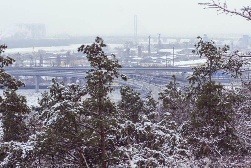 Paesaggio urbano di inverno: nei pini verdi della priorità alta, nella distanza - le costruzioni della fabbrica e dell'autostrada fotografia stock libera da diritti
