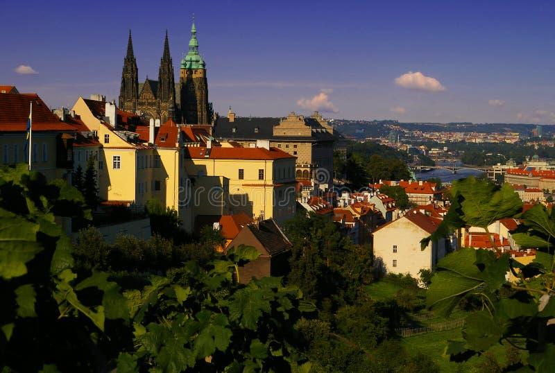 Paesaggio urbano meraviglioso di Praga con la cattedrale fotografie stock
