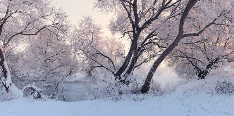 Paesaggio variopinto di inverno Panorama di alba del winer fotografie stock libere da diritti