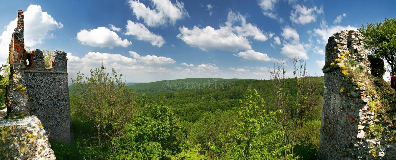 Paesaggio verde con rovina del castello Pajstun immagine stock libera da diritti