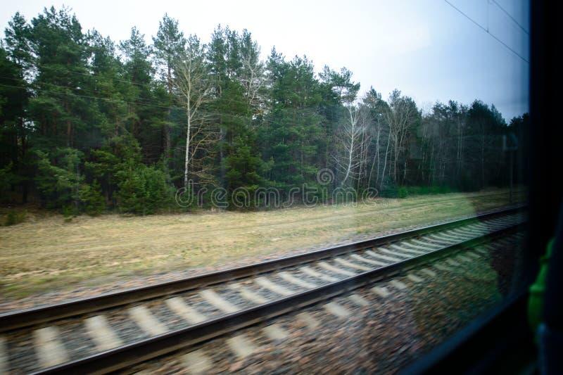 Paesaggio verde dalla finestra del treno commovente fotografia stock libera da diritti