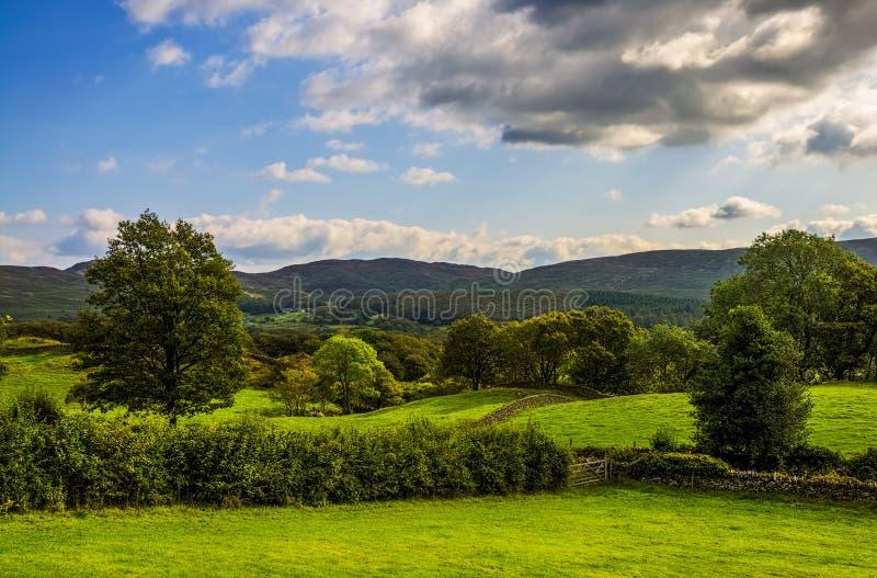 Paesaggio verde della campagna in Cumbria fotografia stock
