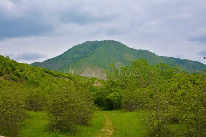 Paesaggio verde delle montagne immagini stock