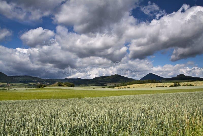 Paesaggio verde di grande azienda agricola fotografia stock libera da diritti