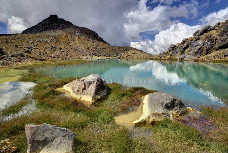 Paesaggio verde smeraldo del lago, parco nazionale di Tongariro fotografia stock libera da diritti