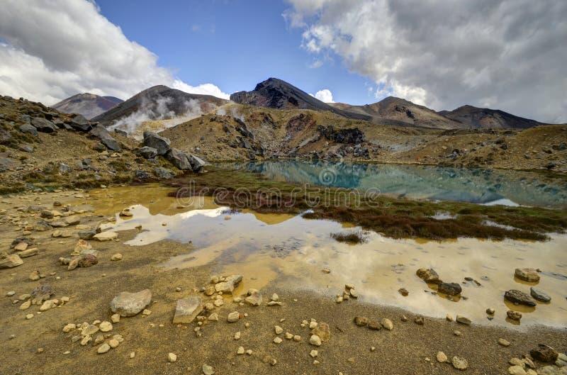 Paesaggio verde smeraldo del lago, parco nazionale di Tongariro fotografia stock