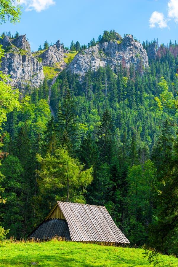 paesaggio verticale - belle alte montagne e una vecchia capanna sopra fotografie stock libere da diritti