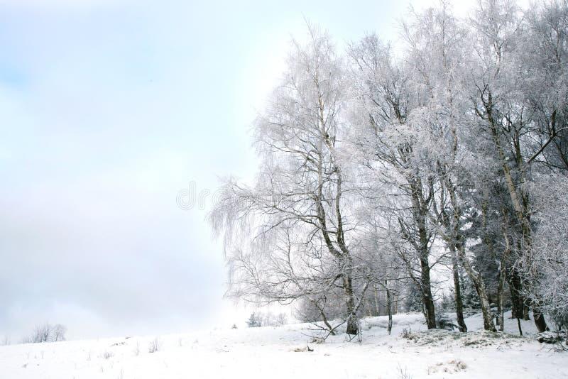 Paesaggio vicino al villaggio di Pasterka in Polonia immagine stock
