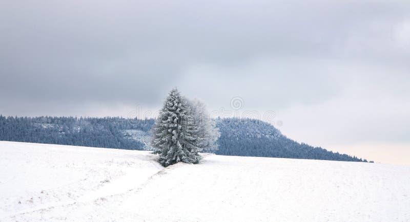 Paesaggio vicino al villaggio di Pasterka in Polonia fotografia stock libera da diritti