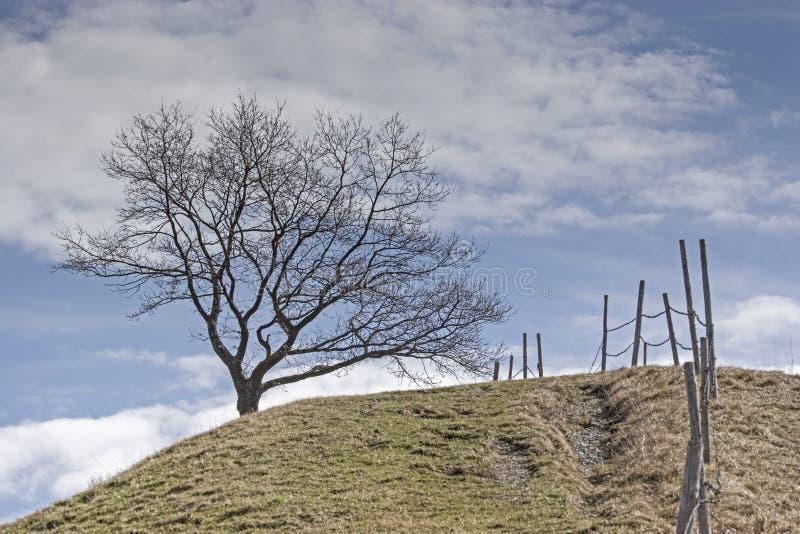 Paesaggio vicino a Murnau in Baviera superiore immagine stock