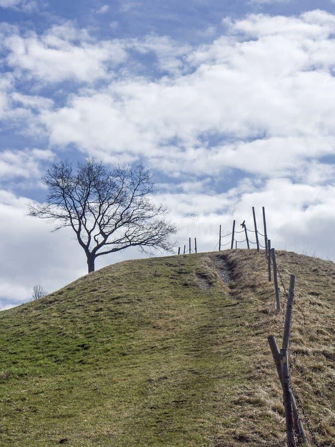 Paesaggio vicino a Murnau in Baviera superiore fotografia stock