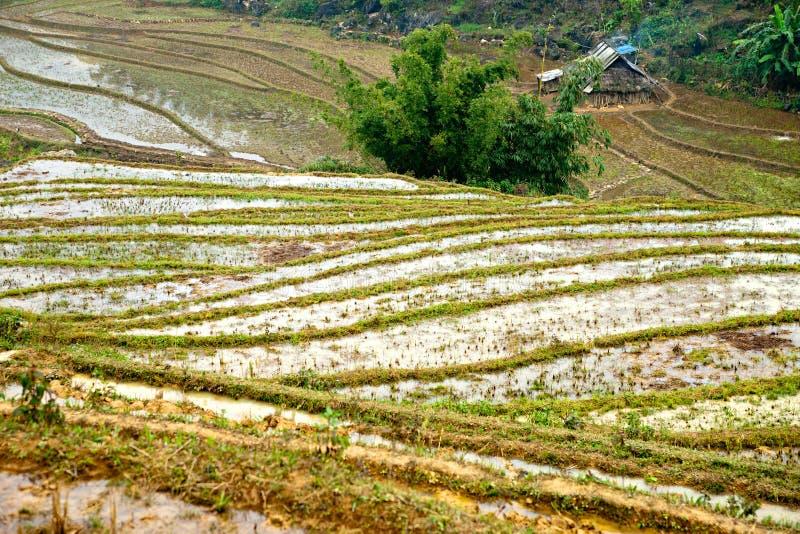 Paesaggio vietnamita del nord. immagine stock