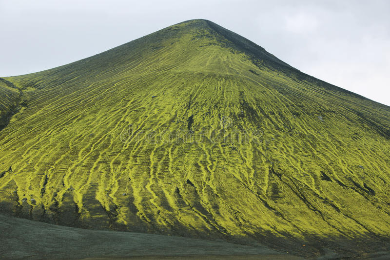 Paesaggio vulcanico coperto di muschio immagini stock