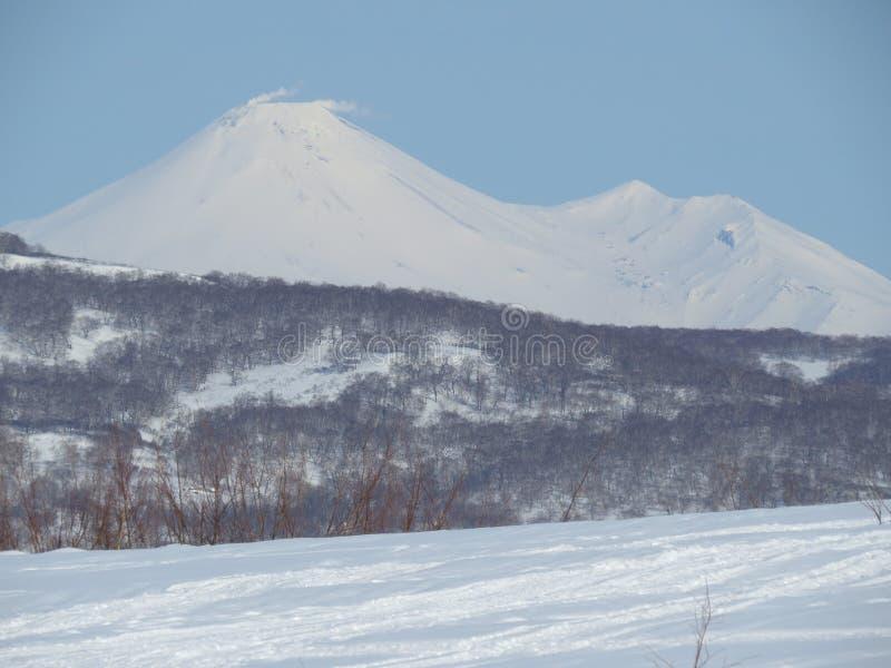 Paesaggio vulcanico di bello inverno della penisola di Kamchatka: vista del vulcano attivo di Klyuchevskoy di eruzione ad alba L' fotografia stock