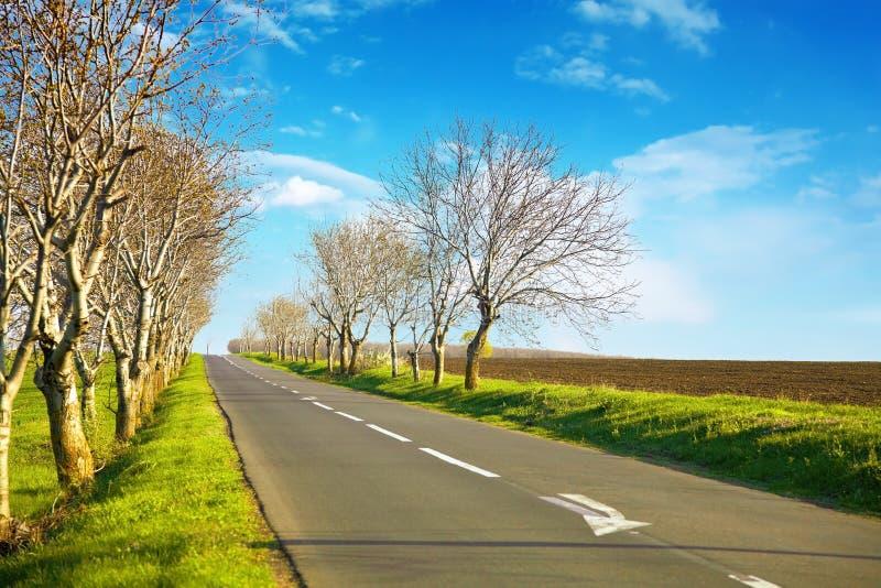 Paesaggio vuoto della strada con un horizont blu fotografia stock