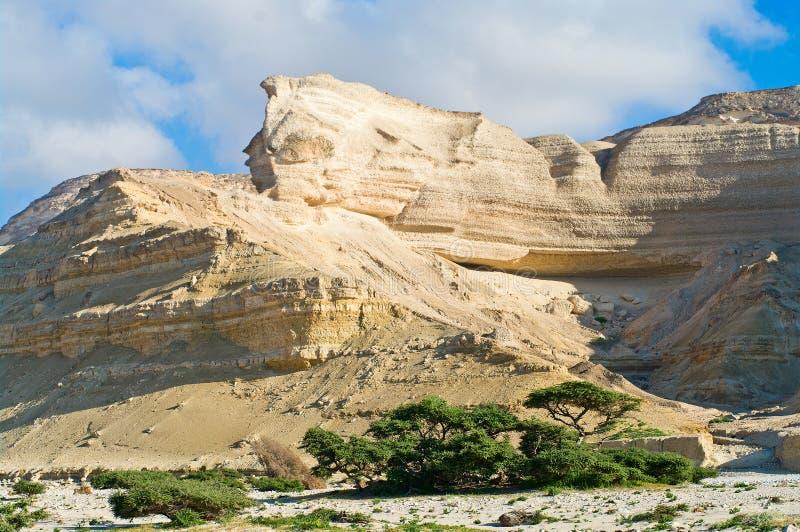 Paesaggio in Wadi Shuwaymiyah l'oman fotografie stock
