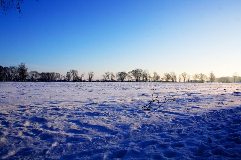 paese blu di inverno immagine stock libera da diritti