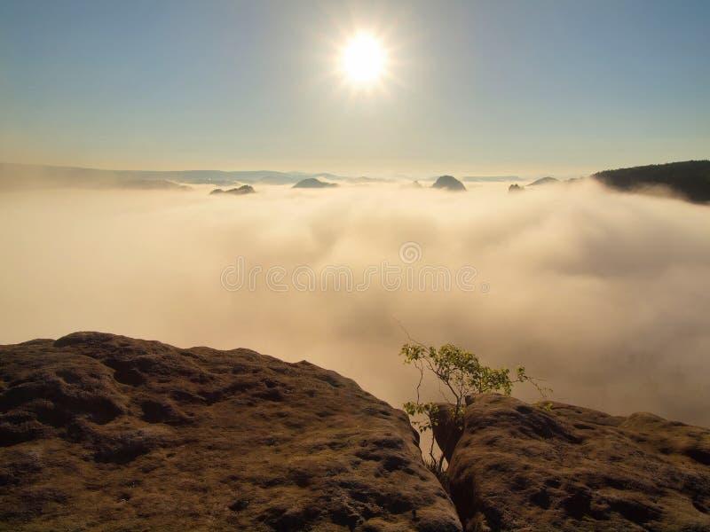Paese di autunno Valle nebbiosa profonda in pieno dei fiocchi pesanti di mattina di nebbia arancio blu I picchi dell'arenaria son fotografia stock