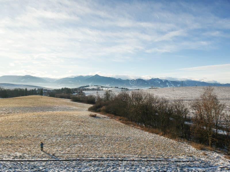 Paese di inverno da un fuco fotografia stock