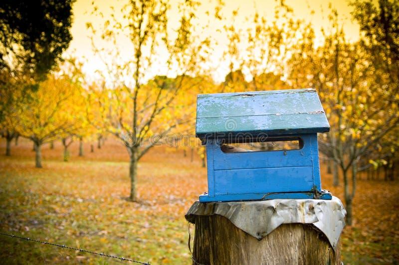 Paese Letterbox fotografia stock