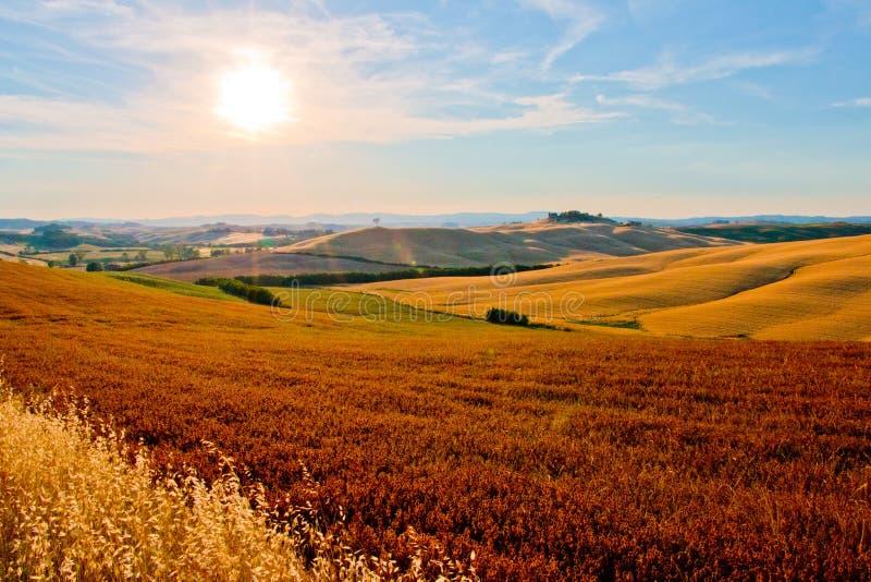 Paese vicino a Siena fotografia stock