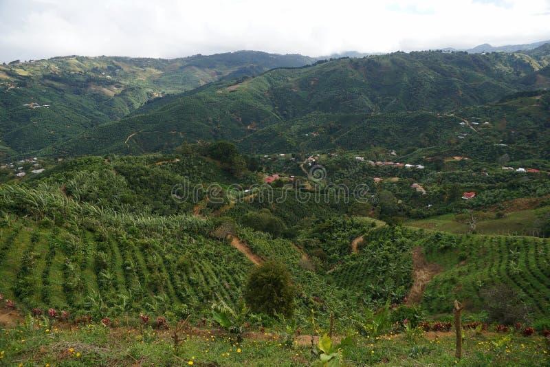 Paesino di montagna e piantagioni in Costa Rica fotografia stock libera da diritti