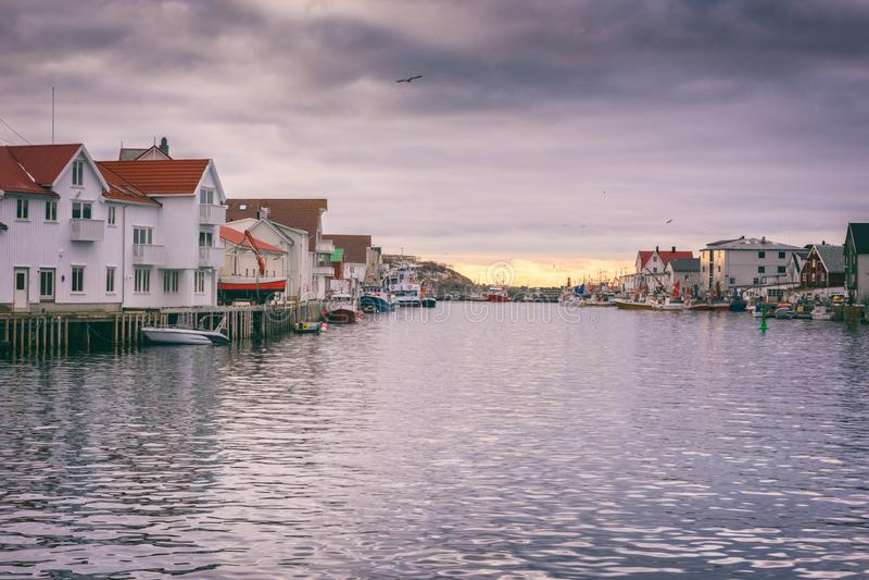 Paesino di pescatori Henningsvaer nelle isole di Lofoten, Norvegia del Nord nella stagione di skrei del merluzzo fotografie stock
