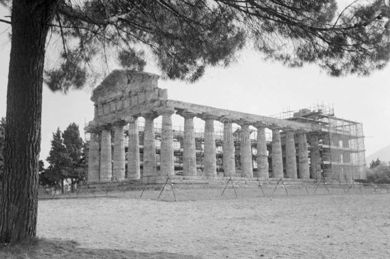 Paestum arkeologisk plats i Paestum arkivfoton