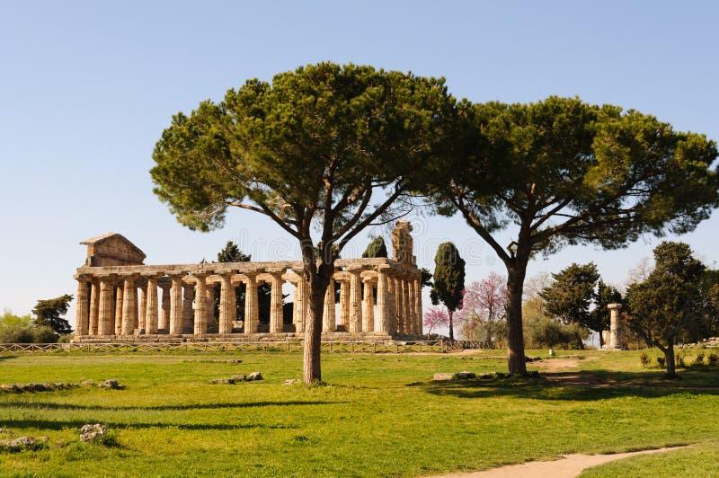 Grekiska tempel av Paestum - Poseidonia royaltyfri fotografi