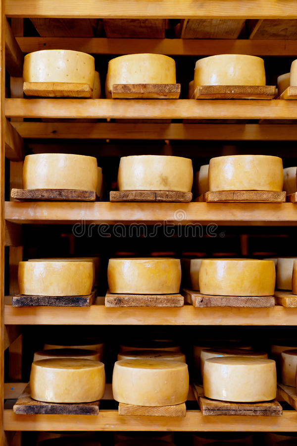 Pag Cheese Stock Image