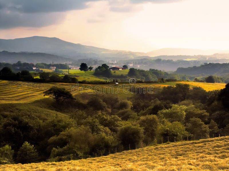 Paga il basque immagine stock libera da diritti