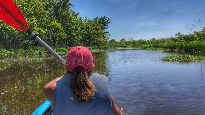 Pagaie del Kayaker attraverso le acque del delta fotografie stock