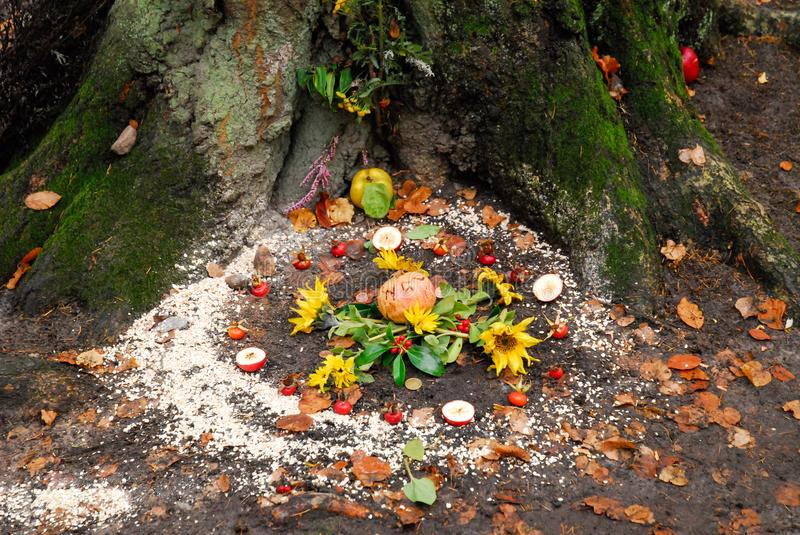 Pagan altar and spiral works outside next to a tree. royalty free stock photo