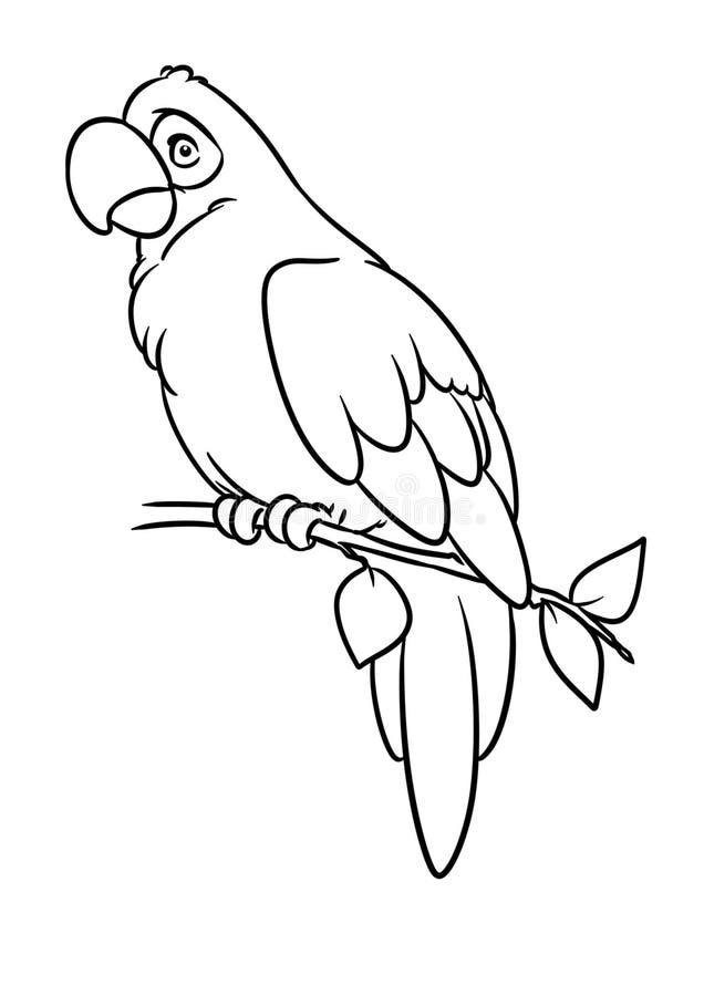 Page animale de coloration d'illustration de bande dessinée de caractère d'oiseau d'ara de perroquet illustration stock