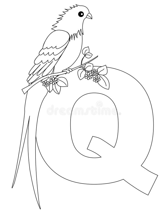 page animale q de coloration d'alphabet illustration stock