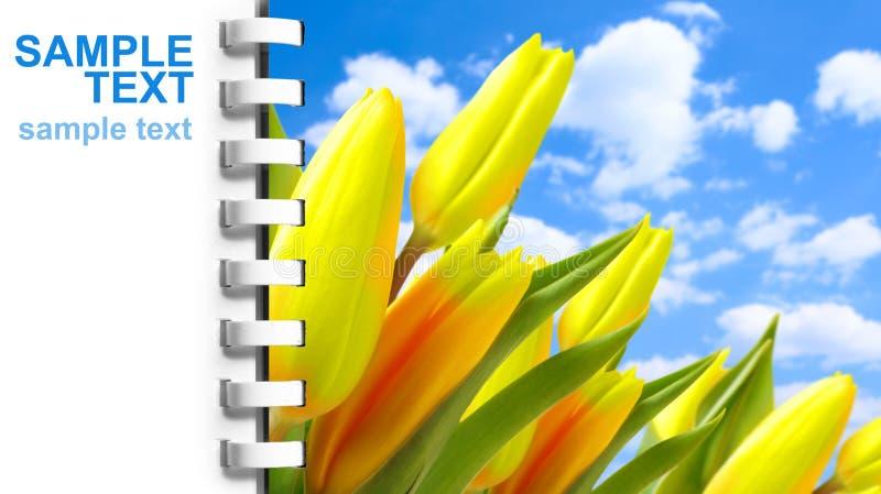 Page de cahier avec l'illustration des tulipes photo libre de droits