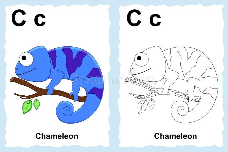 Page de livre de coloriage d'alphabet avec le clipart (images graphiques) d'ensemble à la couleur Lettre C caméléon illustration libre de droits