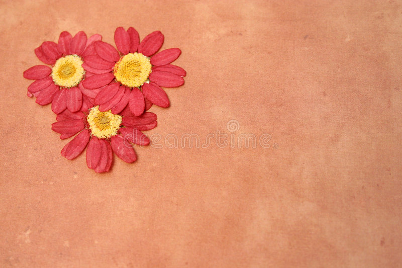 Download Page Layout stock photo. Image of natural, elements, note - 169624