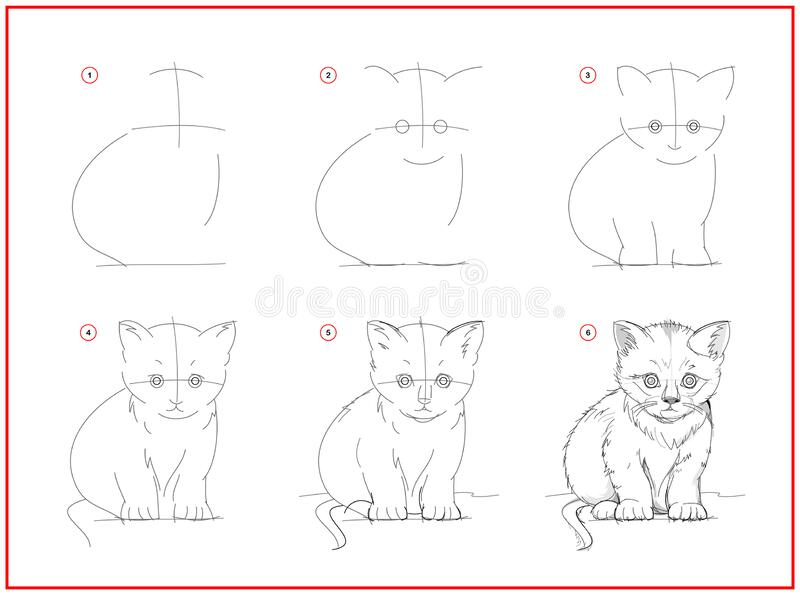 Learn To Draw Cat Stock Illustrations 49 Learn To Draw Cat Stock Illustrations Vectors Clipart Dreamstime