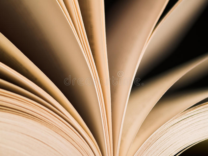 Pages. Of an open book royalty free stock photography