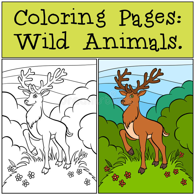 Pages de coloration : Animaux sauvages Cerfs communs mignons illustration de vecteur