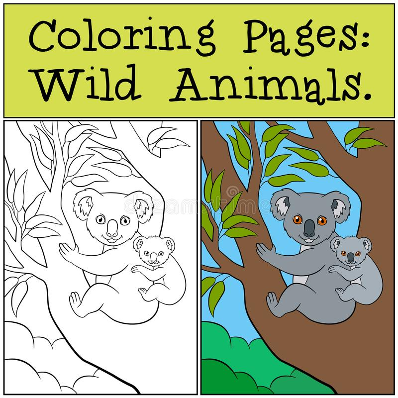Pages de coloration : Animaux sauvages Koala de mère avec son bébé mignon illustration libre de droits